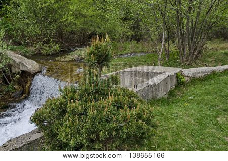 Small  waterfall of water stream in the green forest, Vitosha mountain, Bulgaria
