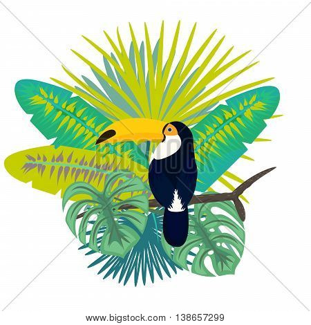 Toucan bird vector illustration for tshirt apparel design. Exotic bird sitting on branch with tropic palm leaves composition. Shirt vector design. Jungle leaves bouquet.