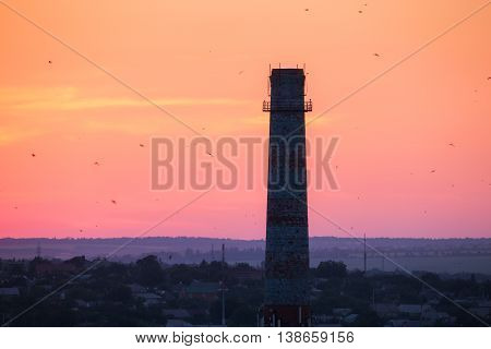 Silhouette of a chimney with flying birds at sunset. Colorful red sky. Industrial landscape