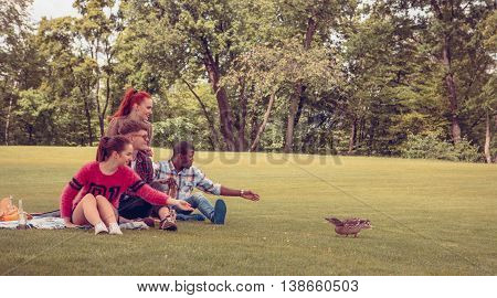 Happy friends feeding wild ducks while spending their free time on picnic in park. People giving foods to ducks all together.
