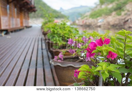 walk path with flower pot on floating house Rafting in river kwai kanchanaburi