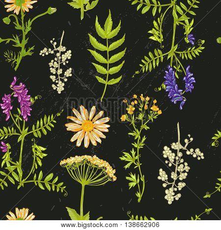 Beautiful hand drawn vector  illustration wildflowers. Boho style seamless pattern.