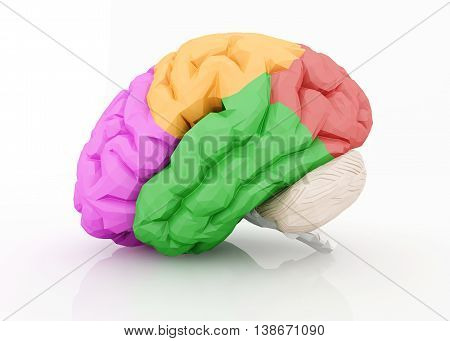 3D Illustration Of Human Brain Isolated On White.