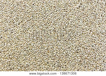Hemp seeds in the form of a fine texture