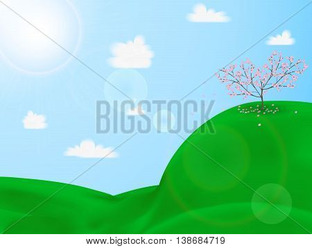 Cherry Blossoms On A Green Hill