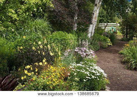 A woodchip path winds through a perennial garden lined with tall trees.