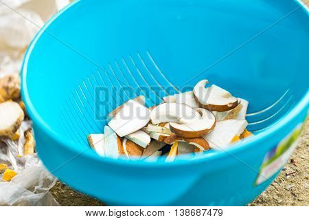 Woman Prepairing Forest Mushrooms For Drying