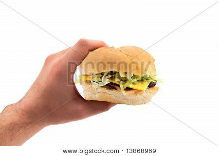 Hand Holding Turkey Sandwich