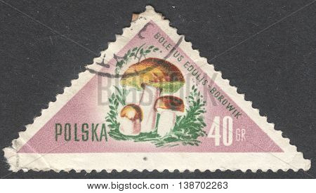 MOSCOW RUSSIA - CIRCA JANUARY 2016: a post stamp printed in POLAND shows a mushroom Boletus edulis the series