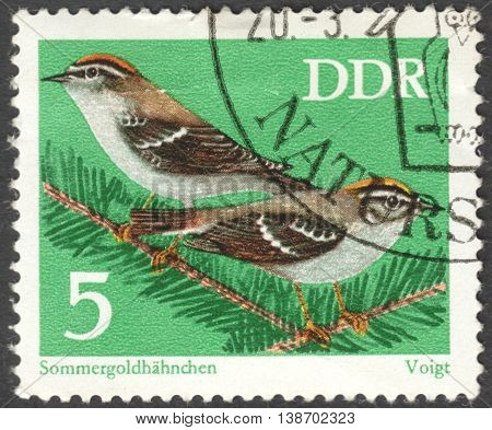 MOSCOW RUSSIA - CIRCA JANUARY 2016: a post stamp printed in DDR shows birdrs