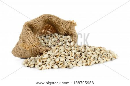 Millet Rice , Millet Grains Isolated