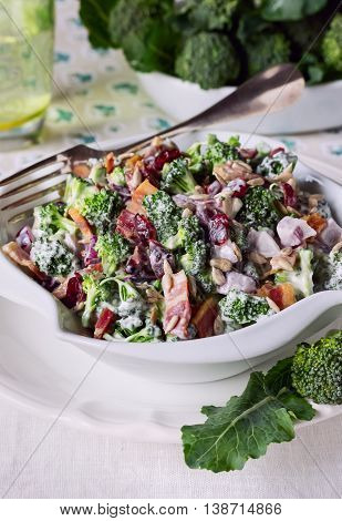 Broccoli Salad with Bacon, Dried Cranberries, Sunflower Seeds and Mayonnaise in white Salad Bowl.