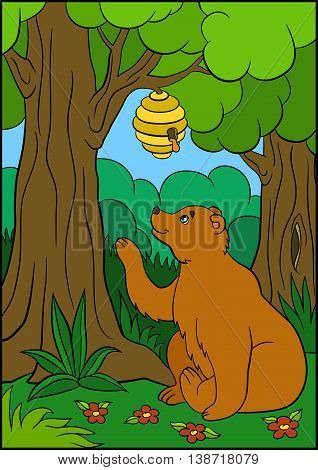 Cartoon animals for kids. Cute brown bear looks at the beehive and smiles.