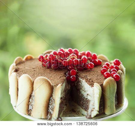 Close-up of ice cream tiramisu cake with cranberries on top against green vivid background.