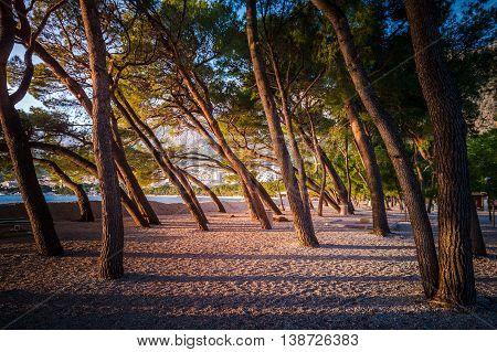Soft Afternoon Sunlight On An Empty Beach In Makarska, Dalmatia, Croatia