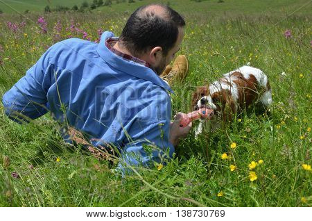 Man and his dog are playing on meadow with doggy toy