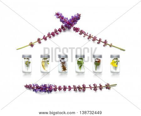 Different healing flowers in house shape on light background