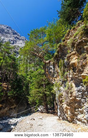 View of Samaria Gorge in central Crete Greece