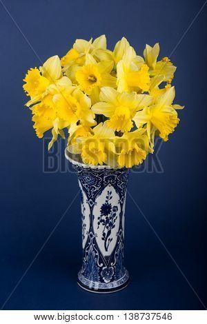 narcis bloemen in mooie blauwe bloemenvaas en blauwe achtergrond