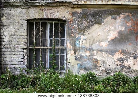One window on an old concrete wall. Grunge background