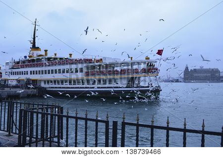 Istanbul Turkey - December 22 2012: Istanbul Ferries (called vapur in Turkish) continue to serve as a key public transport link for many Thousands of commuters tourists and vehicles per day. Seagulls are everywhere in Istanbul and a tradition of feeding g