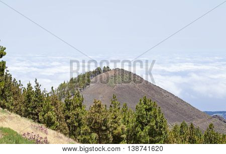 Central Gran Canaria in July nature resource Montanon Negro Black Mountain composed of volcanic ash sea of clouds behind