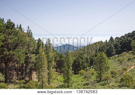 Central Gran Canaria In July