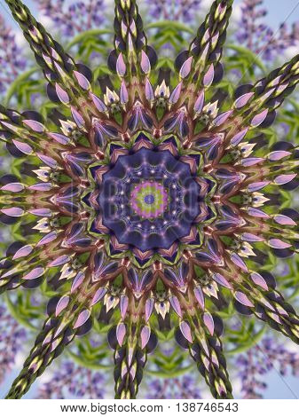 Seamless kaleidoscope texture with the flower lupin