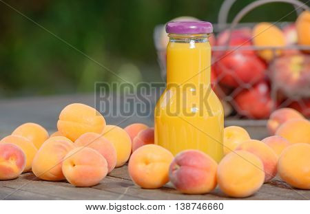 many apricots and bottle of apricot juice drink