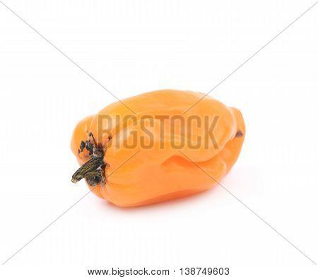 Orange habanero pepper isolated over the white background