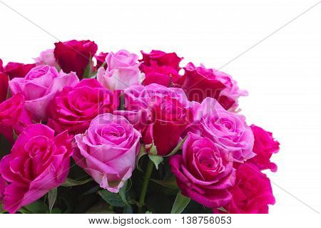 bouquet of pink and magenta rose flowers closeup isolated on white background