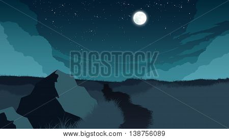 field landscape flat color illustration at night time