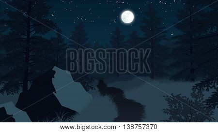 forest landscape flat color illustration at night time