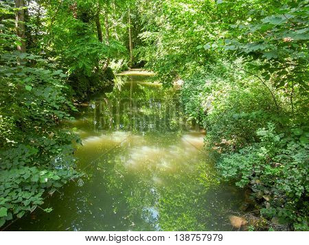 a idyllic overgrown stream in sunny ambiance