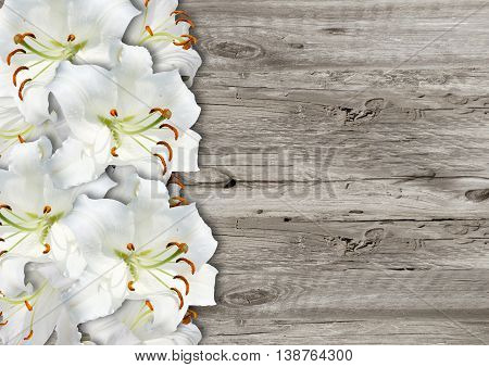 White Lily On  Wood Background