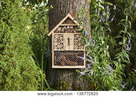 Insect house in the garden, protection for insects, insecten hotel.