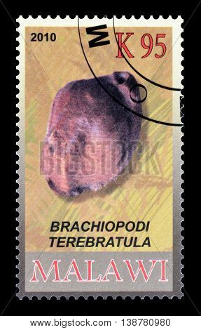 MALAWI - CIRCA 2010 : Cancelled postage stamp printed by Malawi, that shows Fossil.