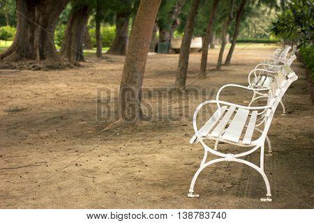 empty white garden chair in the park