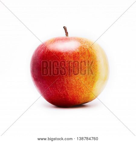 A  mellow red apple on white background