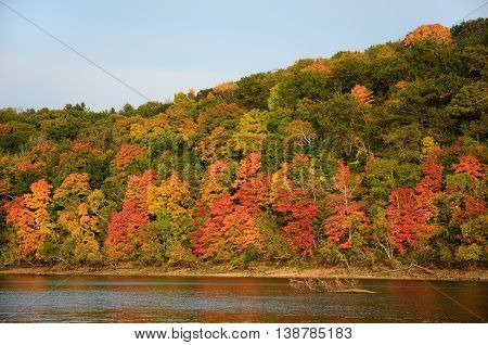 Fall Colors Along the St. Croix River near Stillwater Minnesota