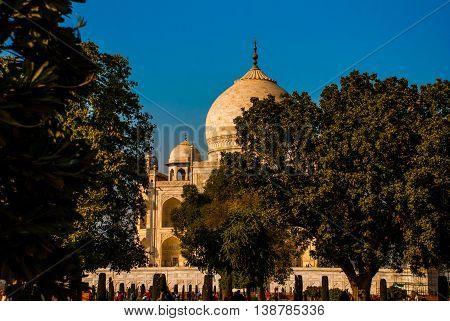 Taj Mahal On The Background Of Trees. Agra, India