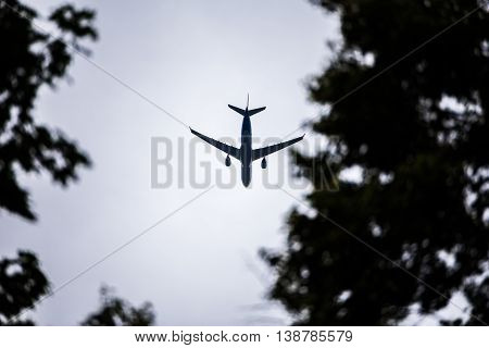 Airplane in the sky and above trees. concept for holidays