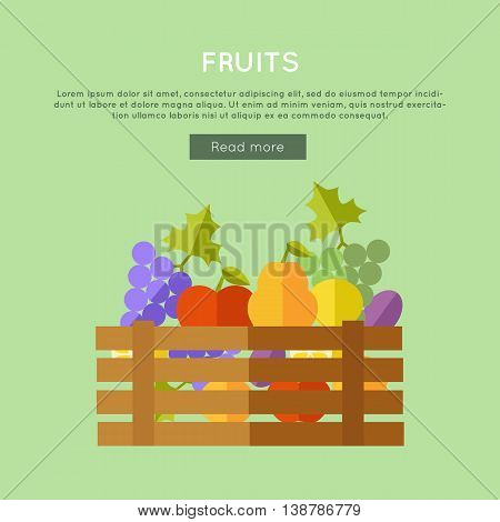 Fruits vector web banner. Flat design. Illustration of wooden box full of fresh farm plants on color background for web pages design. Farming concept with pear, apple, grapes, plum, lemon.