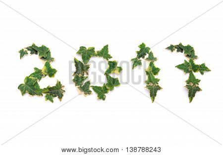 A photo composition made with ivy leaves welcoming the year 2017