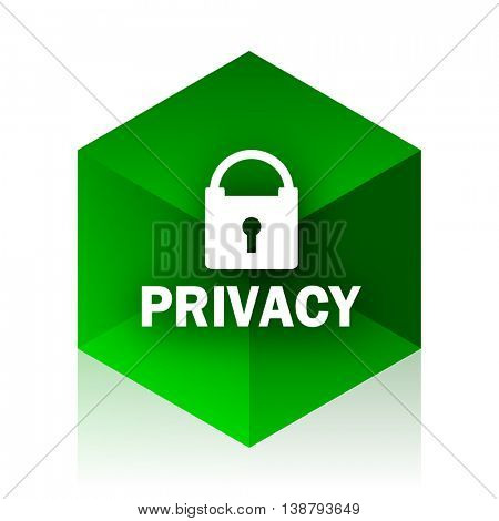 privacy cube icon, green modern design web element