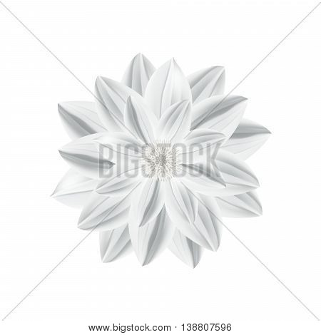 White paper flower in origami technique isolated on a white background. Vector illustration eps10.