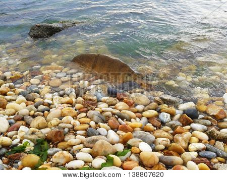 colored stones on the seashore and in all beach
