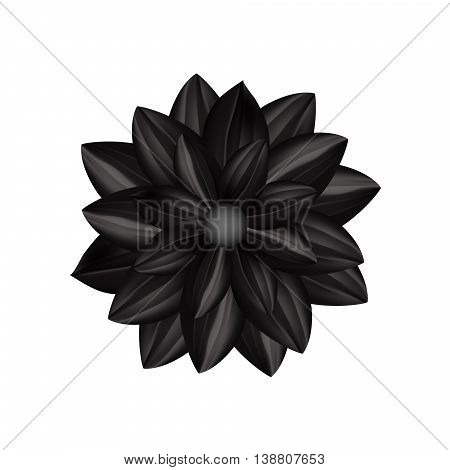 Black flower in gothic style isolated on a white background.