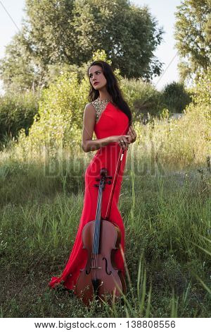 Fairy Cellist Girl In The Meadow