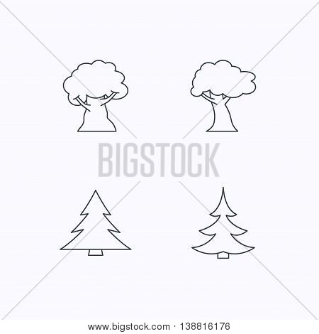 Tree, oak-tree and christmas tree icons. Forest trees linear signs. Flat linear icons on white background. Vector